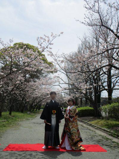 舞鶴公園 和装写真撮り